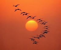 Il Sole Innamorato