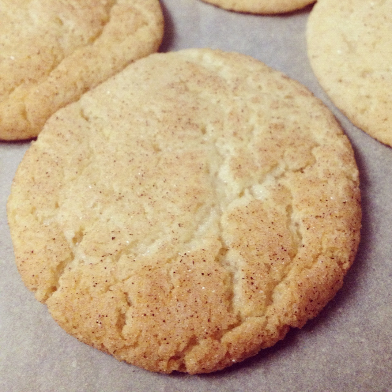 snickerdoodle cookie recipe is the last thing i made with the help of ...