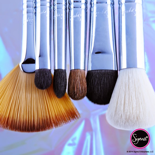 Sigma ethereal radiance brush set