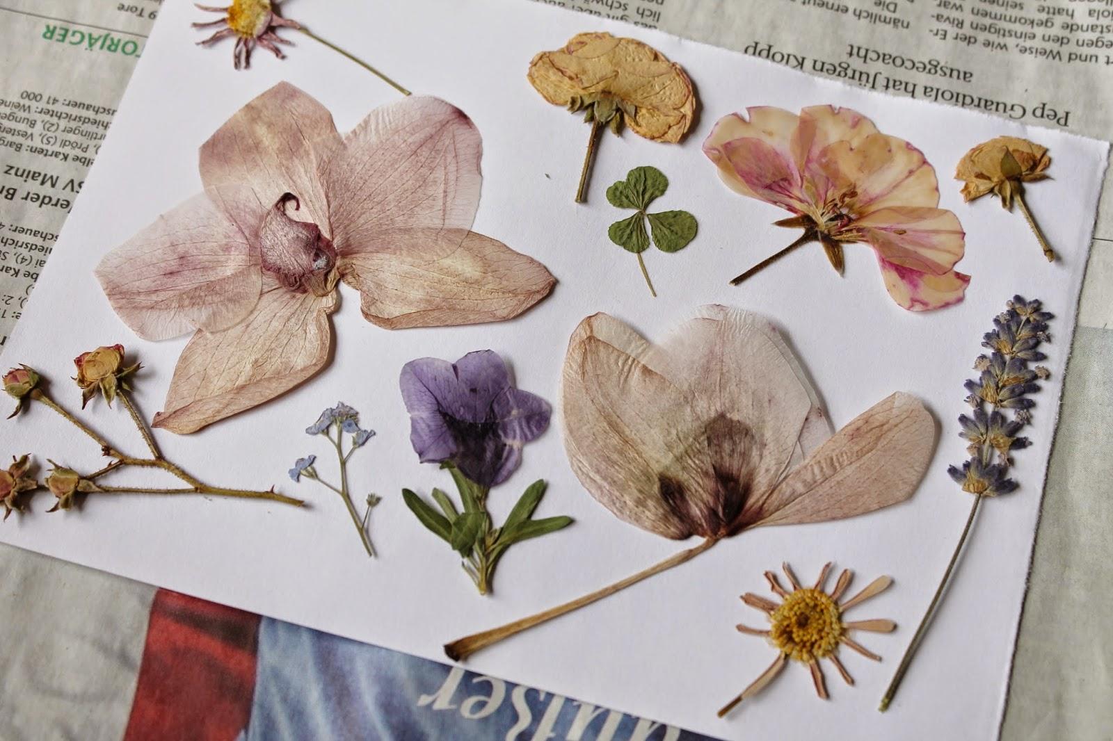 Bild aus gepressten Blüten