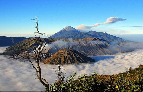 Mount Bromo Tour, Enjoy the Sunrise From an Altitude of 2,329 m !!