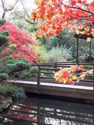 Japanese Garden, St.Mawgan, Cornwall