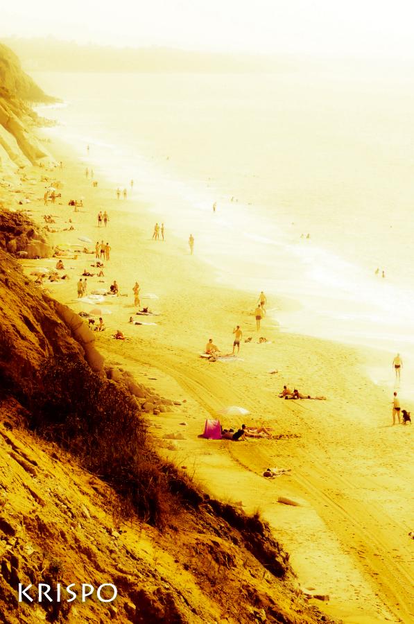 Playa de Bidart vista desde arriba en la duna
