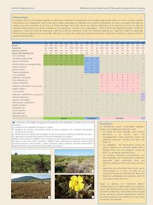http://www.seo.org/congresoXXII/poster/52_2.jpg