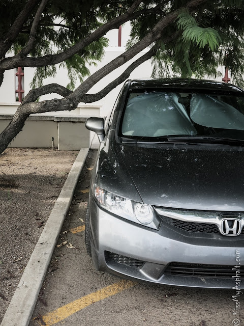 Honda Civic Fancy Parking