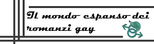 Il mondo espanso dei romanzi gay
