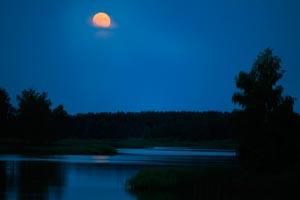 Влияние луны на хороший клев рыбы