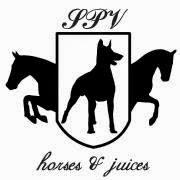 Hevostarvikekutsut järjestää