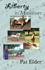 NEW e-book! Miniature Horses