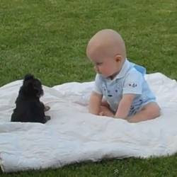 Bebê e o Cachorrinho