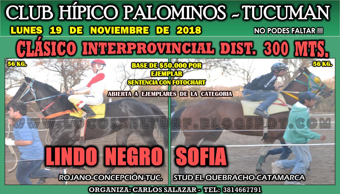 19-11-18-HIP- PALOMIN-CLAS.