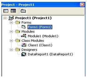 project exporer vb 6.0