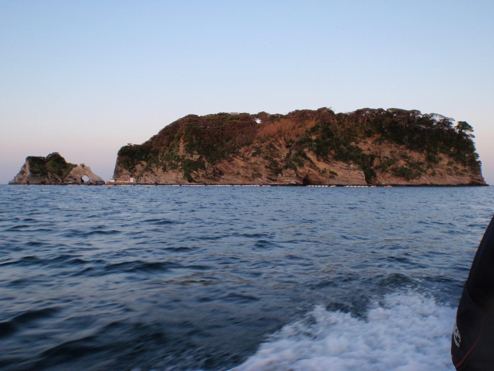 運良く浮島沖向きの 本島船着きポイントに 渡る事が出来ました。このポイ...  千葉県 内房勝山