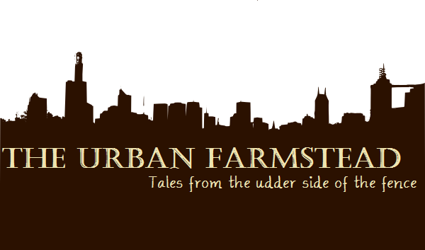 The Urban Farmstead