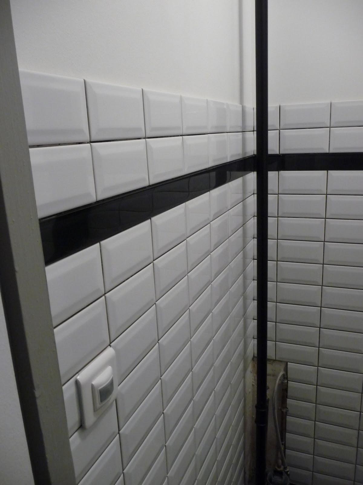 r novation d 39 un appartement le carrelage mural des toilettes. Black Bedroom Furniture Sets. Home Design Ideas