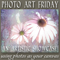 Photo Art Friday