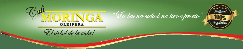 Venta en Cali de Moringa Oleifera Original