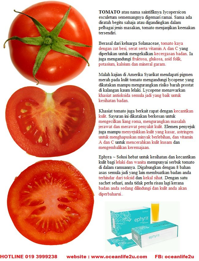 Fungsi Kandungan Tomato dalam Ephyra