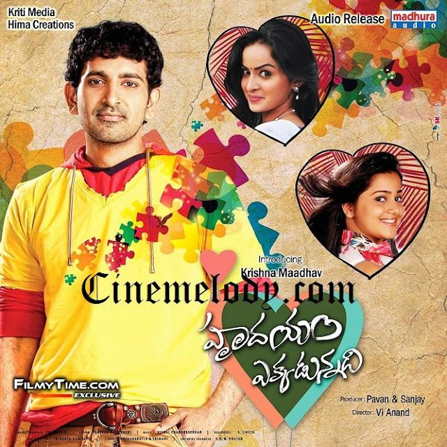 Hrudayam Ekkadunnadi  Telugu Mp3 Songs Free  Download -2013