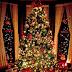 "The Dirt Farmer Foundation's ""Spirit of Christmas 2014"""