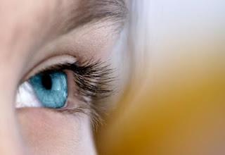 fungsi mata berkedip