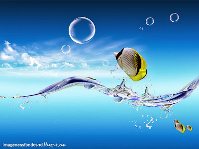 full-hd-fish-tank-water-blue-bubble-background-sea