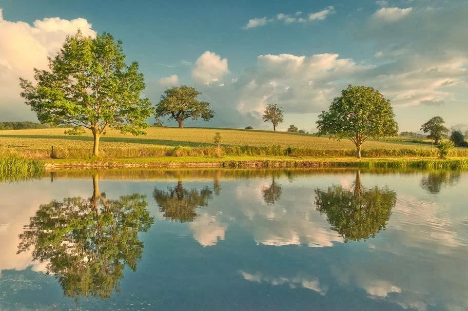 nature-river-sky-trees-morning-wallpaper