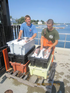 Nh sustainable marine fisheries steelhead trout for Fish market portsmouth nh