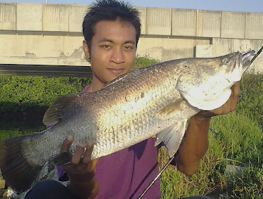 Personal Rekod 2009 3.6kg