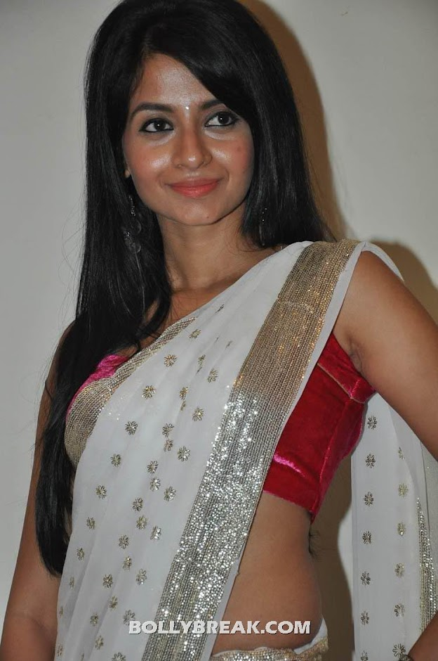 Pavani Reddy Saree photos