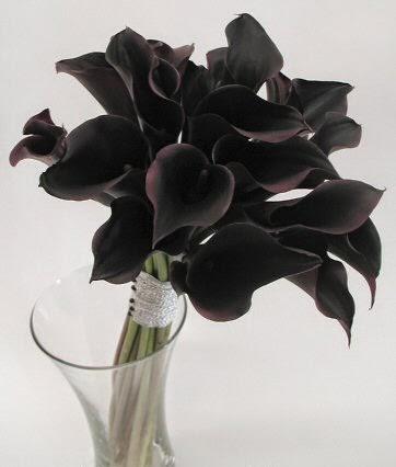 Black Flowers, part 1