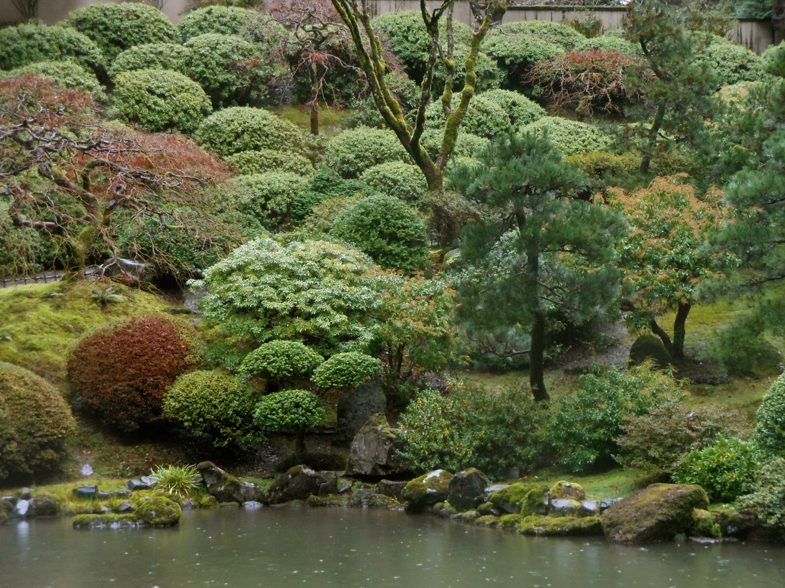 Starr review portland japanese garden and lan su chinese for Japanese landscape