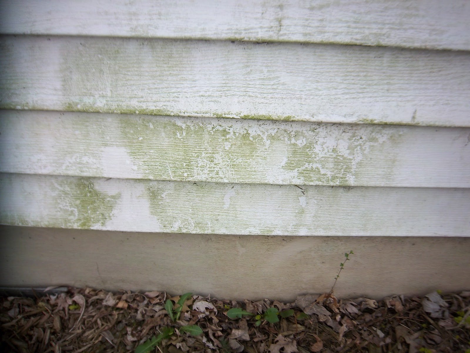 Budgeting With The Bushmans Cleaning Mildew Off Siding