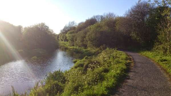 Running Along The Moira Towpath