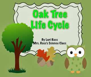 http://www.teacherspayteachers.com/Product/Oak-Tree-Life-Cycle-875800