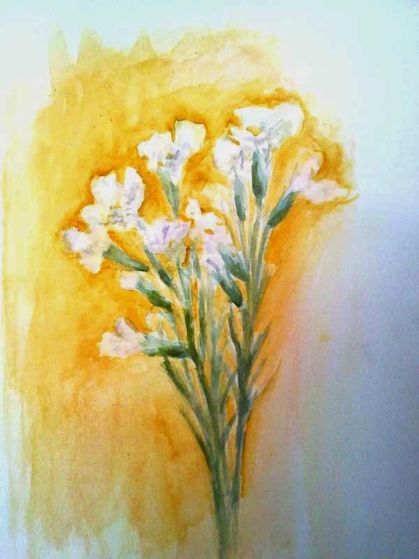 flores blancas con acuarela