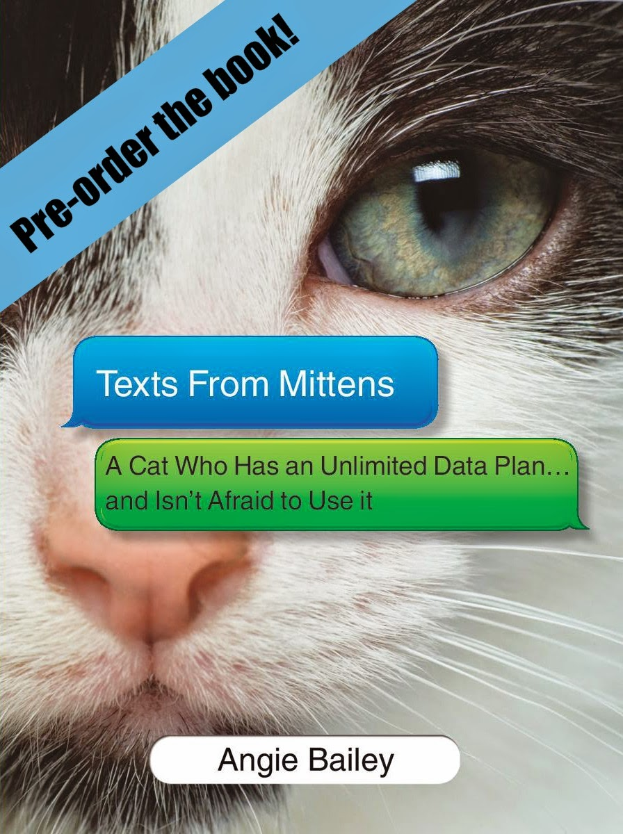 Pre-order the Mittens Book!