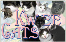 My Kitties have their own blog.
