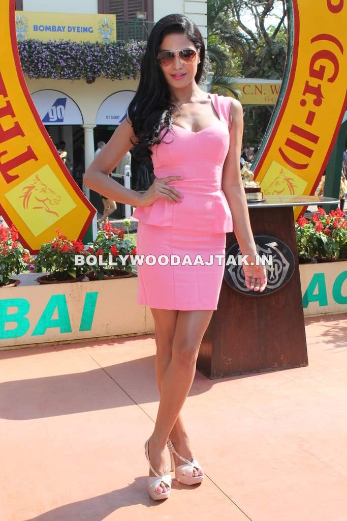Veena Malik in Pink Dress - Veena Malik in Pink Dress at Wadia Cup Derby Event