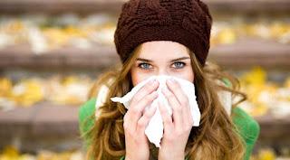 Gripi po vjen - 6 Mënyra Natyrale për ta Parandaluar