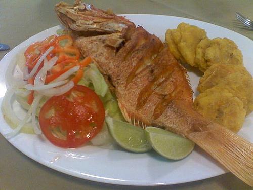 gastronomia de pescado: