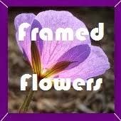 Framed flowers BOM