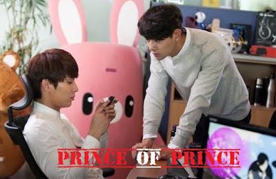 Sinopsis Drama Prince of Prince Episode 1-10 (Tamat)