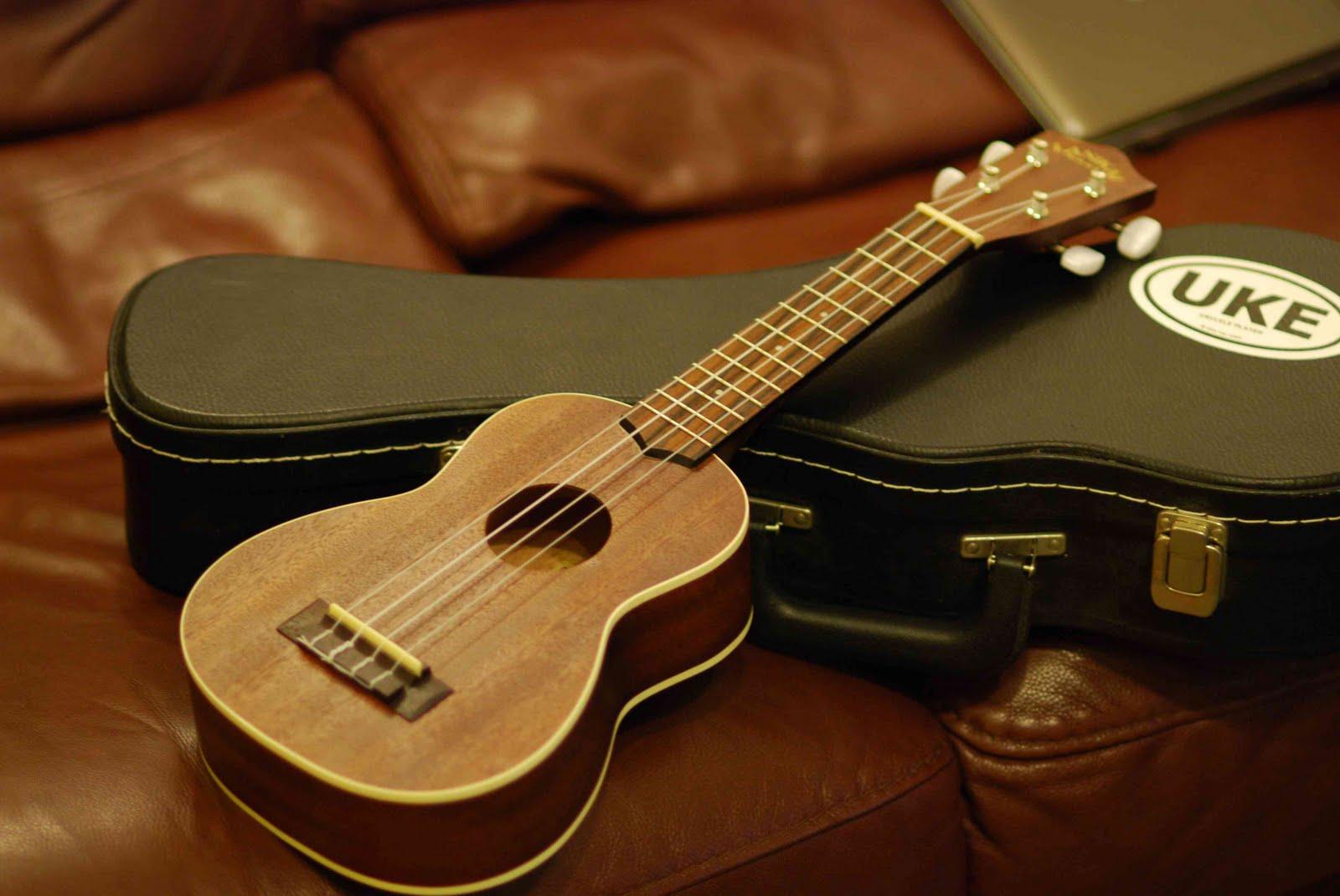 Buy university essays online ukulele