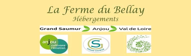 La Ferme du Bellay - Gîtes ruraux - Vacances - Chambre - Anjou - 49 - Montreuil-Bellay - Saumur