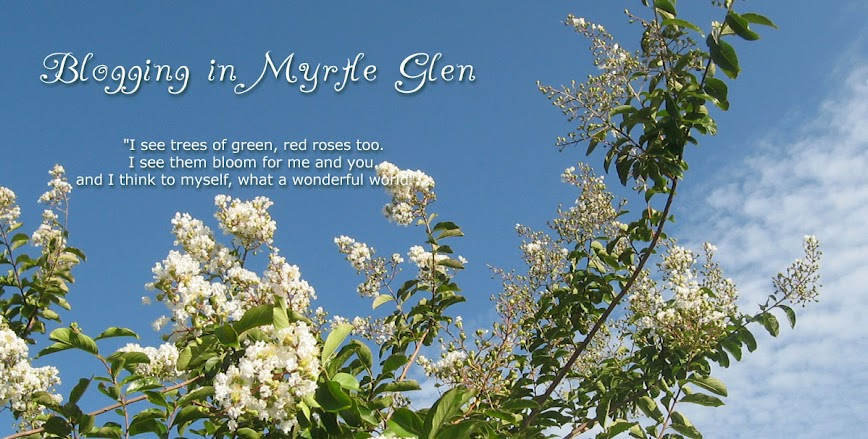 Blogging in Myrtle Glen, a central Florida gardening journal
