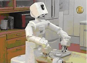 Robot Pembantu Rumah