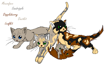 Warrior Cats Blossomkit pure dusty brown she-cat