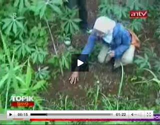 Gambar Foto Video Film Rekaman Jejak Kaki Raksasa Ciamis Heboh