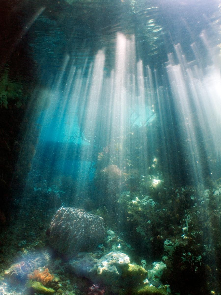 Perairan Raja Ampat Papua Barat